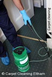 Eltham Steam Carpet Cleaners 3095